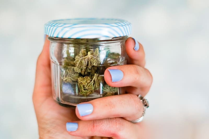 Beauty shot of marijuana that has not been decarbed. Woman's hand holding glass jar with blue lid and blue fingernails.